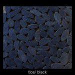 Toros_Black